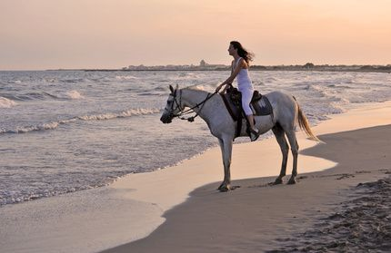 evjf Deauville balade à cheval