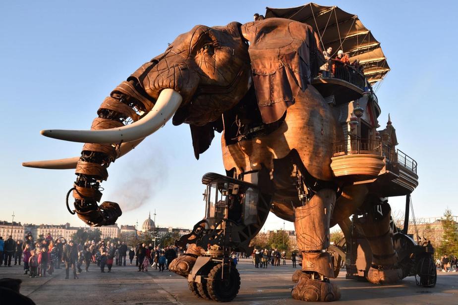 meilleures activités evjf nantes - balade éléphant à nantes